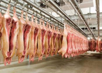 Депутаты Тайваня закидали свиными потрохами премьер-министра, протестуя против импорта мяса из США
