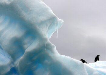 Ученые нашли глубоко во льдах Антарктиды минерал с планеты Марс
