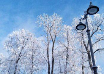 Гидрометцентр спрогнозировал потепление на следующей неделе в Москве