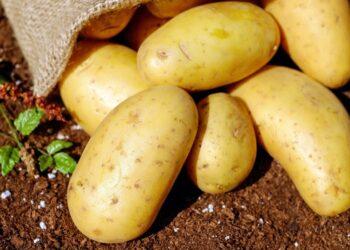 Названо полезное свойство картофельного сока для кожи
