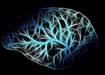 Корейские ученые создали контролирующий клетки мозга имплант с беспроводной зарядкой